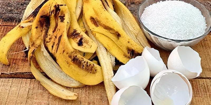 Добриво з бананових шкурок: 15 незвичайних способів їх застосування 9