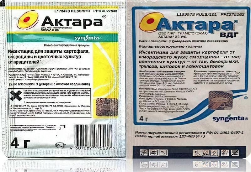 Позбутися від попелиці та ряду інших шкідників допоможе «Актара»