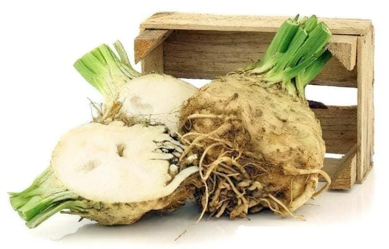 Як зберегти корені та листову селеру на зиму 3