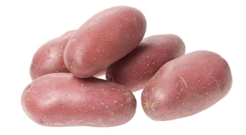 Кращі сорти червоної картоплі для вирощування 3