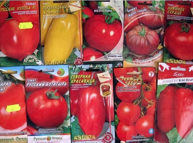 Різні насіння томатів в пакетиках