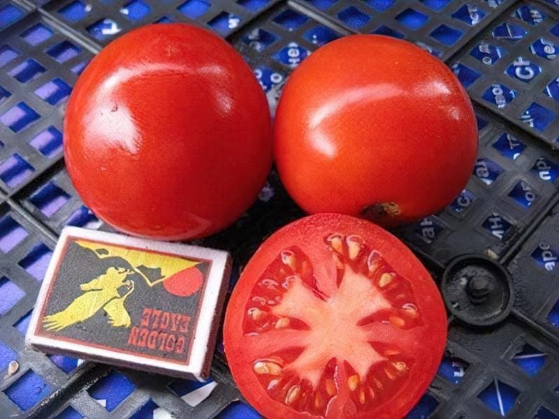 "Сорт томату ""Валютний"""