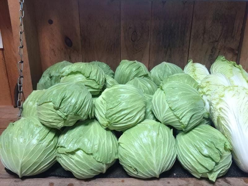 Як зберегти свіжу капусту до весни? 3