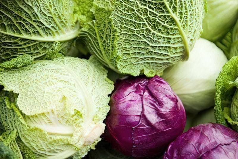 Як зберегти свіжу капусту до весни? 1
