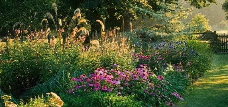 8 основних видів квітників 9