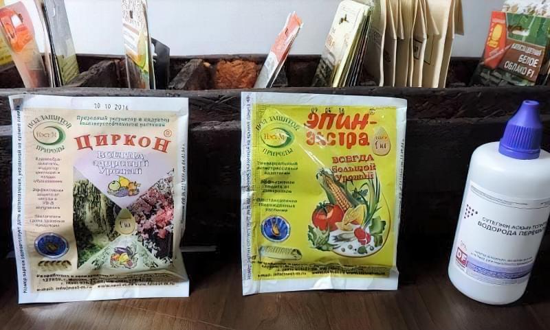 Готуємо насіння до посіву на розсаду: етапи і способи 5