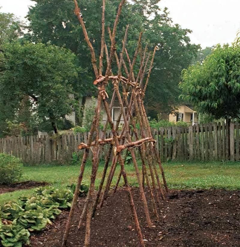 А-подібна конструкція для витких рослин