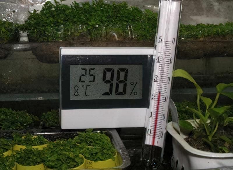 Кліматичний контроль в теплиці