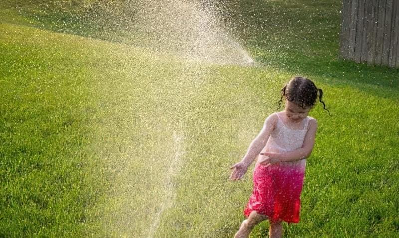 Полив газону в спеку потрібно проводити раз на два дні