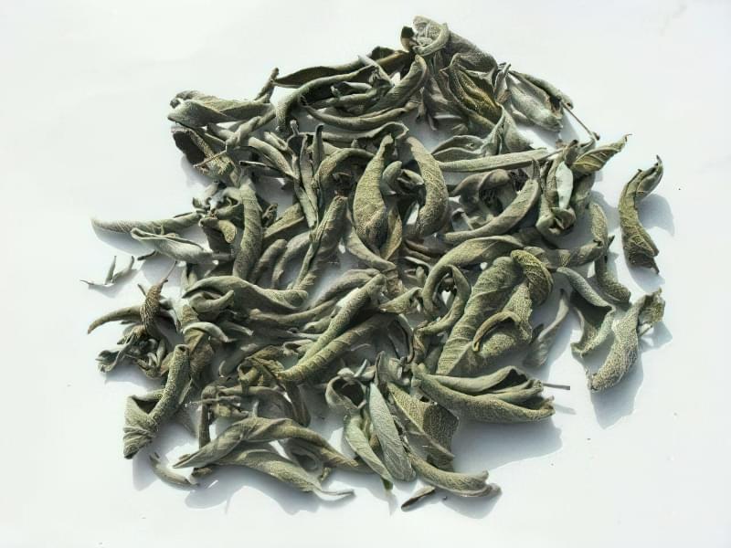 Шавлія відрізняється високою концентрацією ефірних олій, особливо у листі