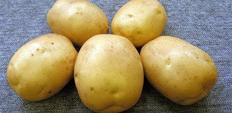 Самі розсипчасті сорти картоплі для пюре. Краща картопля для смаження і салатів 12