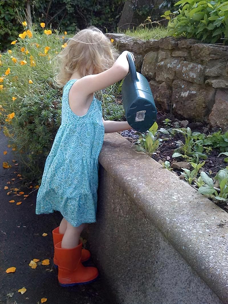Полив овочів: коли, як і скільки поливати 3