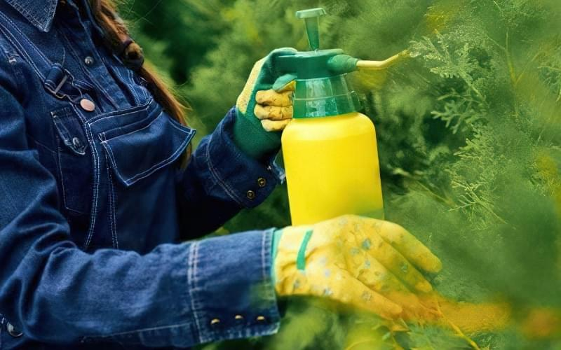 можна удобрювати не тільки городні, але і садові культури