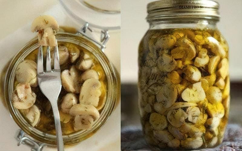 Кращі рецепти маринованих грибів на зиму 3