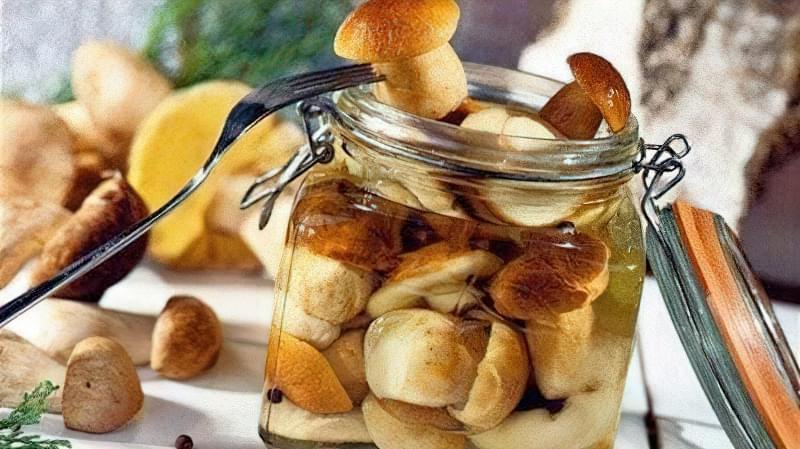 Кращі рецепти маринованих грибів на зиму 1