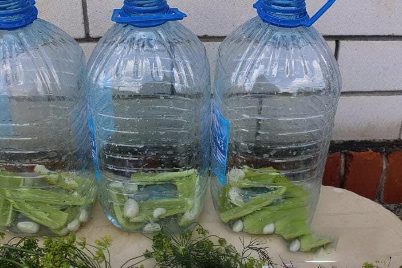 Солоні огірки в пластиковій пляшці на зиму 2