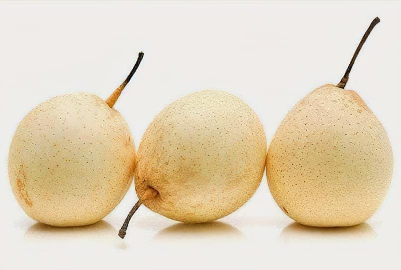 Різновиди і корисні властивості сортів китайської груші 1