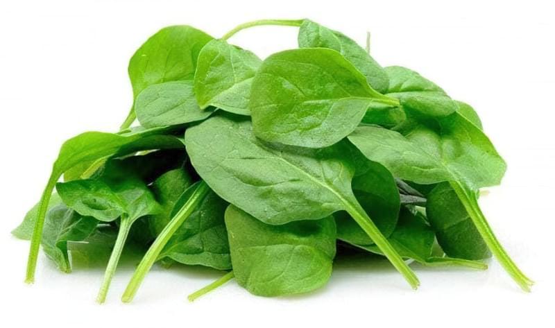 Сорти шпинату: опис, вирощування 1