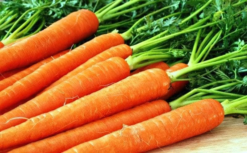 Чи треба обрізати морквяну гичку: розбираємося, як не погубити урожай 1