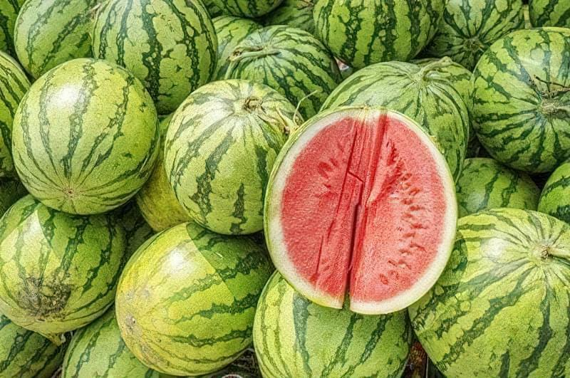 Що таке кавун – ягода, фрукт або все-таки овоч? 1