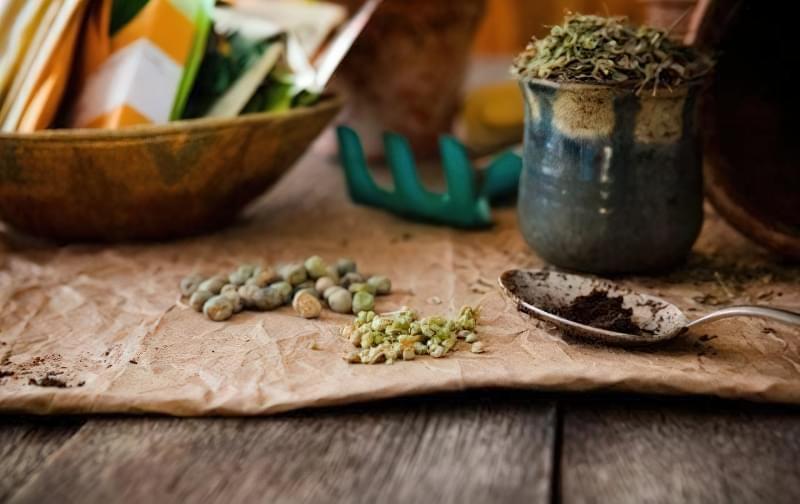 Скарифікація насіння — спосіб прискорити проростання, як проводити 1