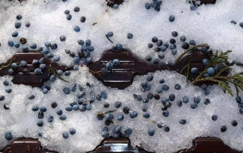 Стратифікація насіння в домашніх умовах в холодильнику 2