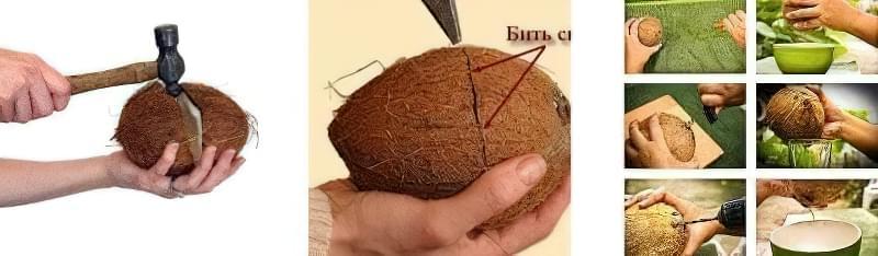 Як почистити кокос: 5 простих методів 2