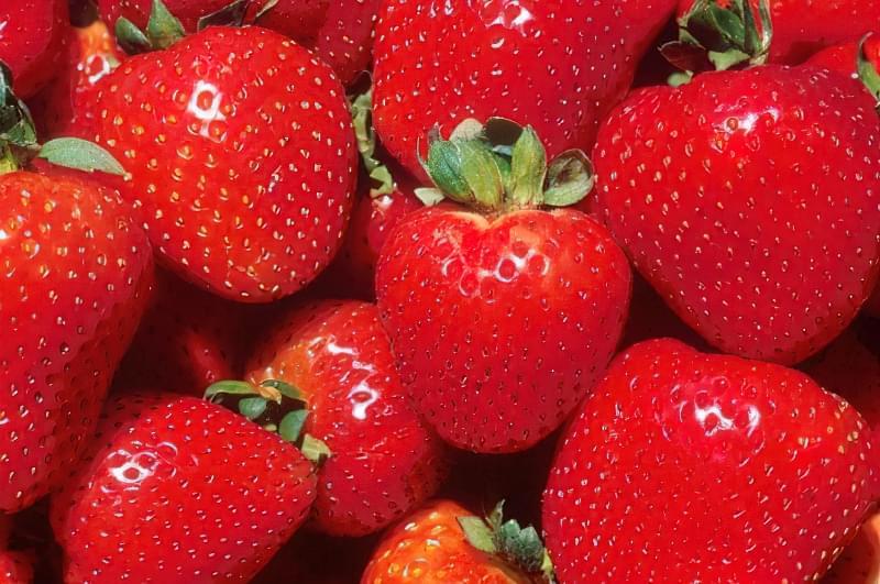 Великі і стиглі ягоди фото
