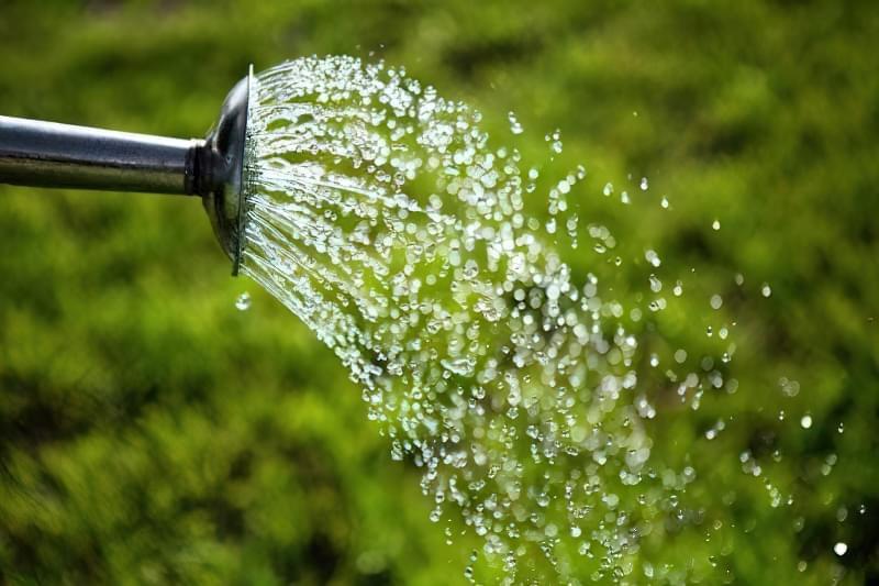 Процес поливу з лійки