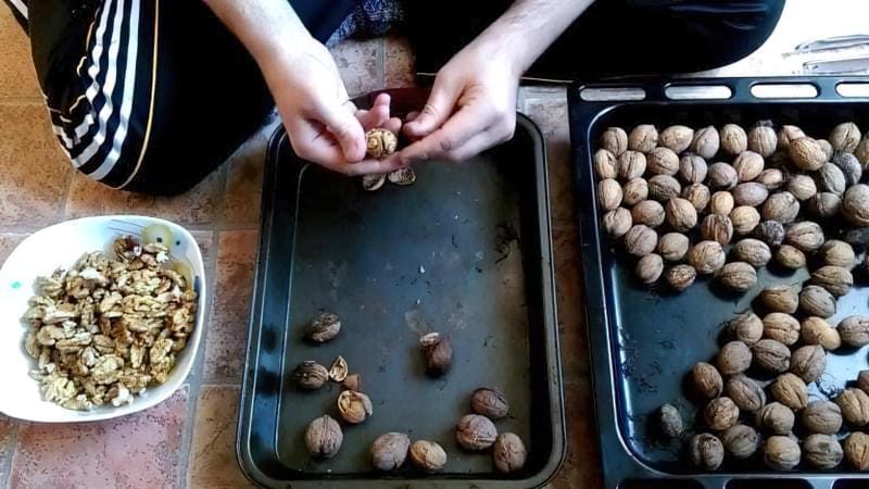 Сушка волоських горіхів в духовці