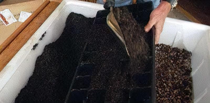 Грунтові суміші під розсаду баклажанів