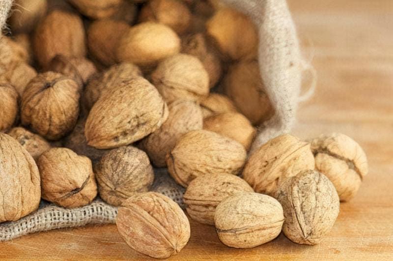 Терміни зберігання волоських горіхів в шкаралупі 1