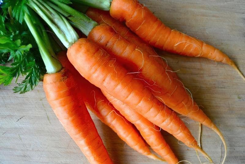 Як садити моркву навесні? 2