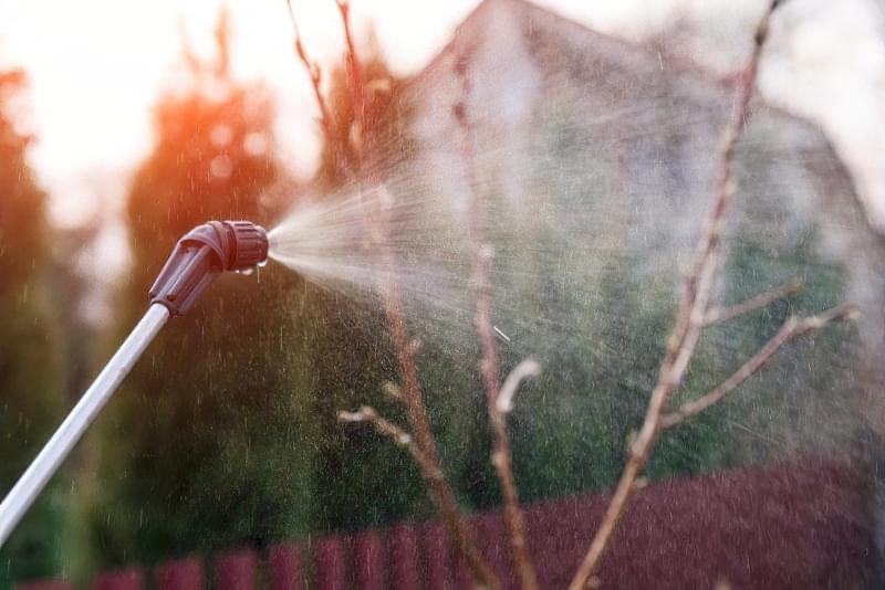 Залізний купорос для захисту саду від хвороб і шкідників 1