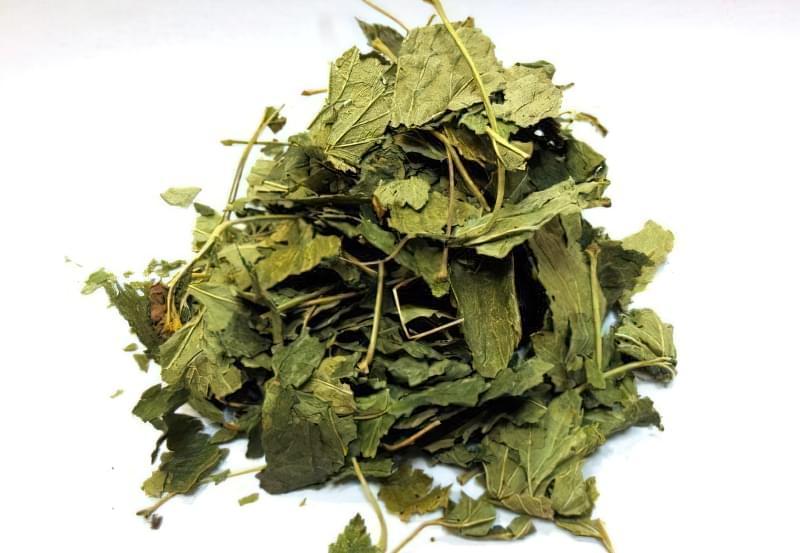 Сушені листя смородини