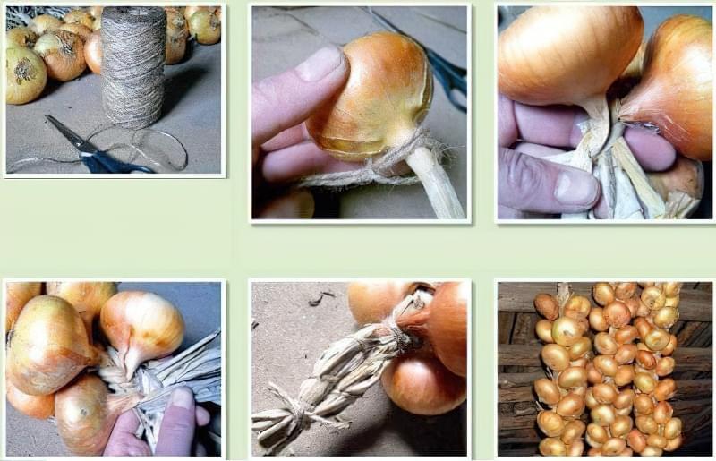 Способи плетіння часнику в косу для зберігання 3