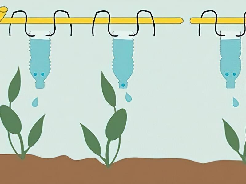 Пляшки можна підвісити за допомогою міцного дроту таким чином, щоб вода капала поруч з рослинами