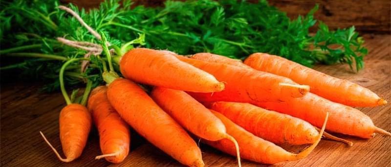 Кращі сорти моркви на зиму 1