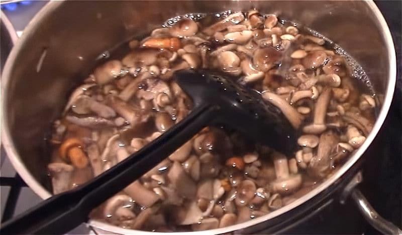 Мариновані опеньки на зиму — смачні рецепти 2