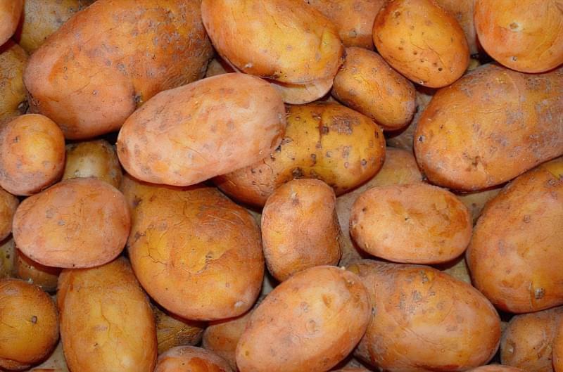 Температура замерзання картоплі 2