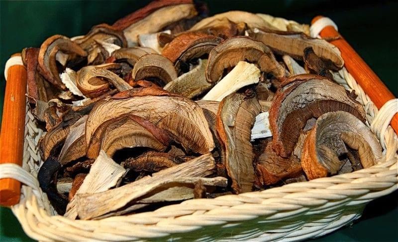 Як засушити гриби на зиму в домашніх умовах 1