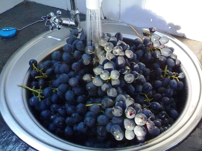 Виноградний сік в домашніх умовах 1