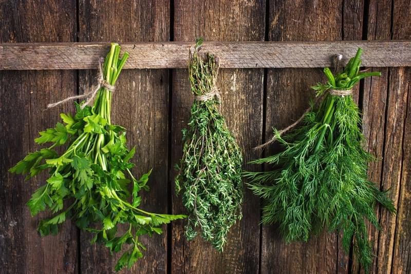 Як правильно сушити зелень в електросушарці, духовці, аерогрилі 4