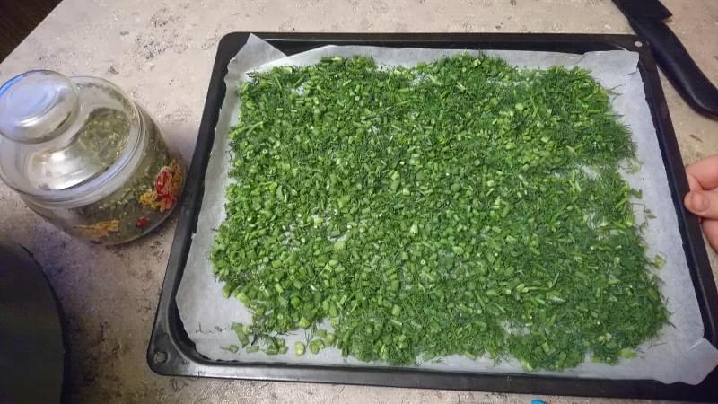 Як правильно сушити зелень в електросушарці, духовці, аерогрилі 5