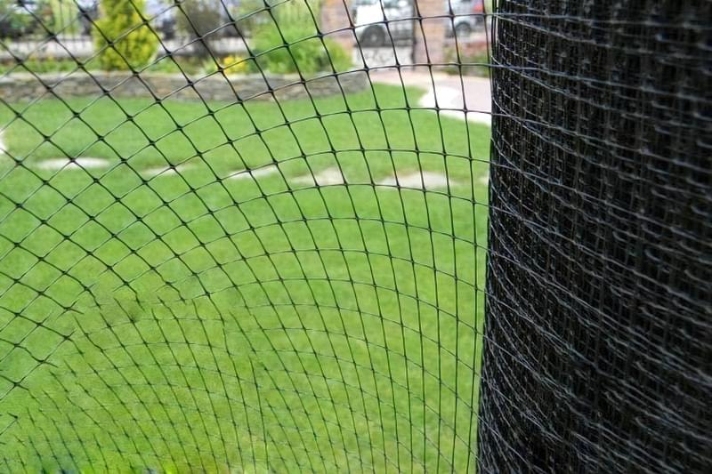 Ефективність сітки від кротів для захисту ділянок і газонів 2
