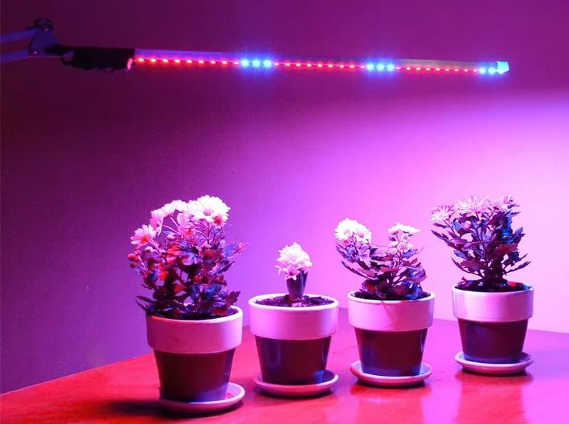 Фітолампи для кімнатних рослин і розсади 3