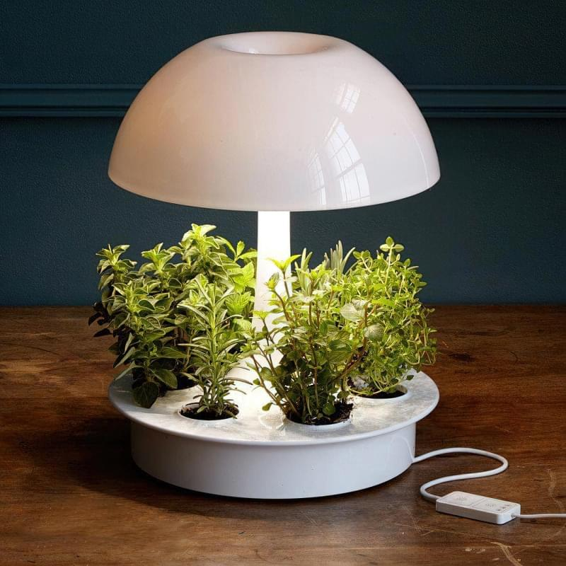Фітолампи для кімнатних рослин і розсади 4