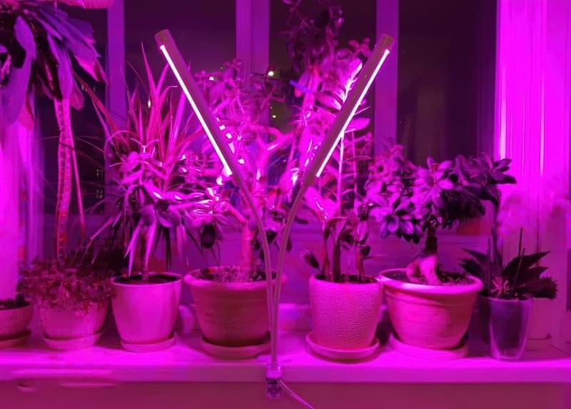 Фітолампи для кімнатних рослин і розсади 6