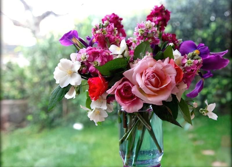 7 секретних добавок, які значно продовжать життя букету квітів 2
