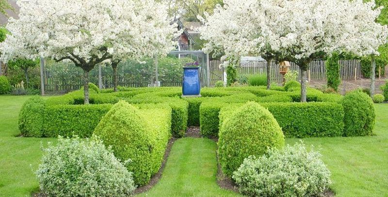 Плодовий сад в ландшафтному дизайні 1